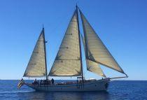 Kilena of Corsica